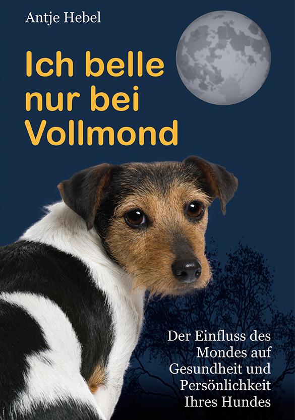 Antje Hebel, Buch