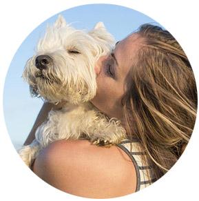 dein hund - dein liebster schatz