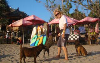 Antje-Hebel versorgt Strassenhunde in Bali