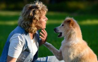 Antje-Hebel-Hunde-Verhaltenstherapie